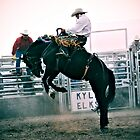 saddle bronc by Heath Dreger
