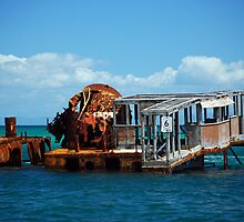 Water World - Moreton Island by Barbara Burkhardt