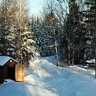 Last Snow  by Shelby  Stalnaker Bortone