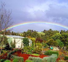 "The Garden at ""Stoney Bottom"" in Bridgetown, WA by Elaine Teague"