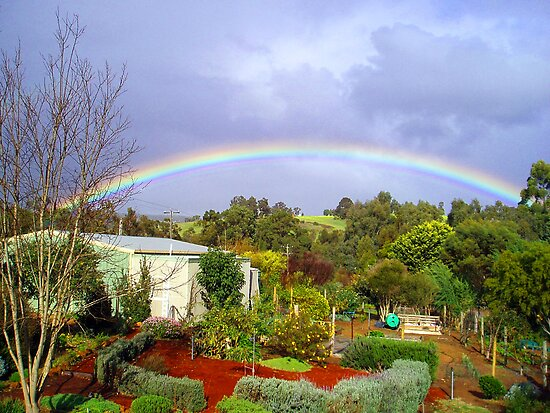"The Garden at ""Stoney Bottom"" in Bridgetown, WA by Elaine Teague"