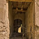 Passage Way ~ Abandoned Finca by Squealia