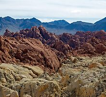 Valley of FIre by Stephen Beattie
