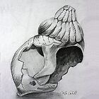 Shell no.2 by Orla Cahill
