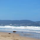 Looking at Monterey by VanillaDolphin