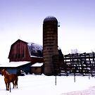 Winter barn by cherylc1