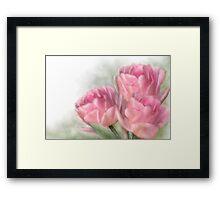 Angelique Tulips Framed Print