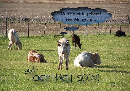 Get Moo-ving by Terri Chandler