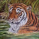 """""""Tiger Pool"""" - Oil Painting by Avril Brand"""