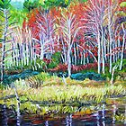 Woodland Reflections- New England by Richard Nowak
