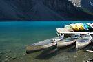 Canoes on Moraine Lake by Barbara Burkhardt