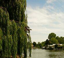 riverbank by Gracie Borgnet