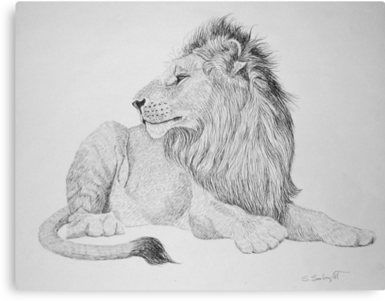 Lion #1 by sally seabright