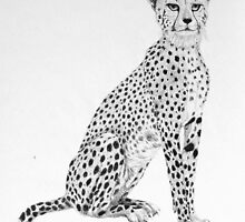 Cheetah by sally seabright