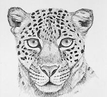 Leopard Head by sally seabright