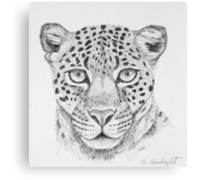 Leopard Head Canvas Print