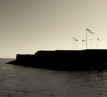 Fort Sumter by Emilie Baltimore