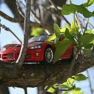 Viper in the Tree by Cheyenne