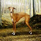 Ch Florita Favolosa, Italian Greyhound by rickdickinson