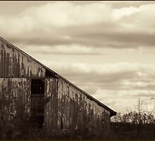 Bygone Era #2: Abandoned Farmhouse by G. Patrick Colvin