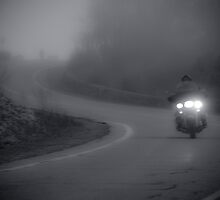 Foggy Bike Ride by Jason Lee Jodoin