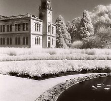 Werribee Mansion Pond by Angie Muccillo