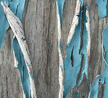 Drive In Blue by Nicole Gesmondi