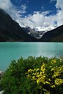 Lake Louise - 4 by Barbara Burkhardt