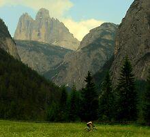 Really Mountian Biking by HelmD