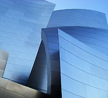 waves, disney concert hall by karen peacock