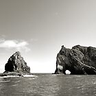"""Hole in the Rock"" - Bay of Islands, NZ by David Haviland"