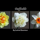 Daffodil collage by Justine Devereux-Old