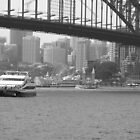 Luna Park View of Sydney Harbour by Bellavista2