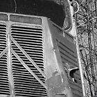 The Citroen H Van by AbsintheFairy