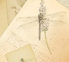 The study of dragonflies by Sonya Reasor