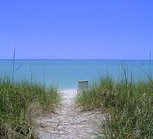 Captiva Island Beach  by Shelby  Stalnaker Bortone