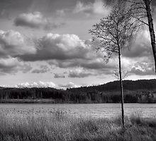 Lochside by Empato Photography