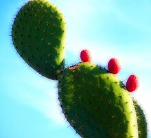 Prickly Red Bubbles by Megan Martin