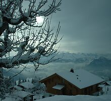 Mt Rigi Chalet by Frank Donnoli