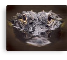Loxahatchee Gator Canvas Print