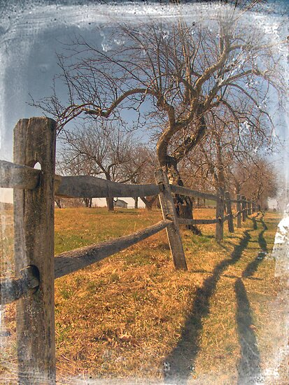Wooden Fence by Aaron Campbell
