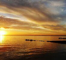 Golden Sunset at Brighton Beach by Roz McQuillan