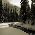 Yoho Winter Scene by Robert Mullner
