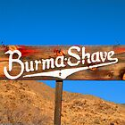 Burma Shave by Bobby Deal