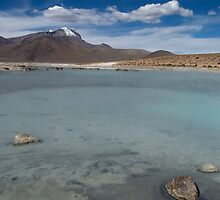 Salar de Surire - Chile by Lisa Germany