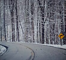Right Curve Ahead  by Rachel Counts