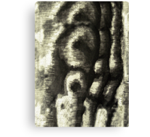 Etching Abstract Canvas Print