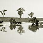 Djenné, Mali #31 by Mauricio Abreu