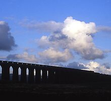 Ribblehead viaduct with train, Yorkshire by Mishimoto