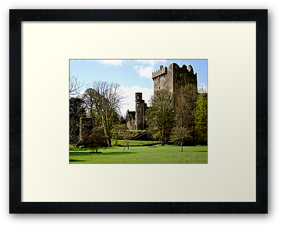 Blarney Castle, Ireland by Erin  Sadler